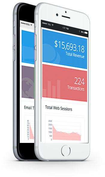 Email Marketing Analytics Mobile